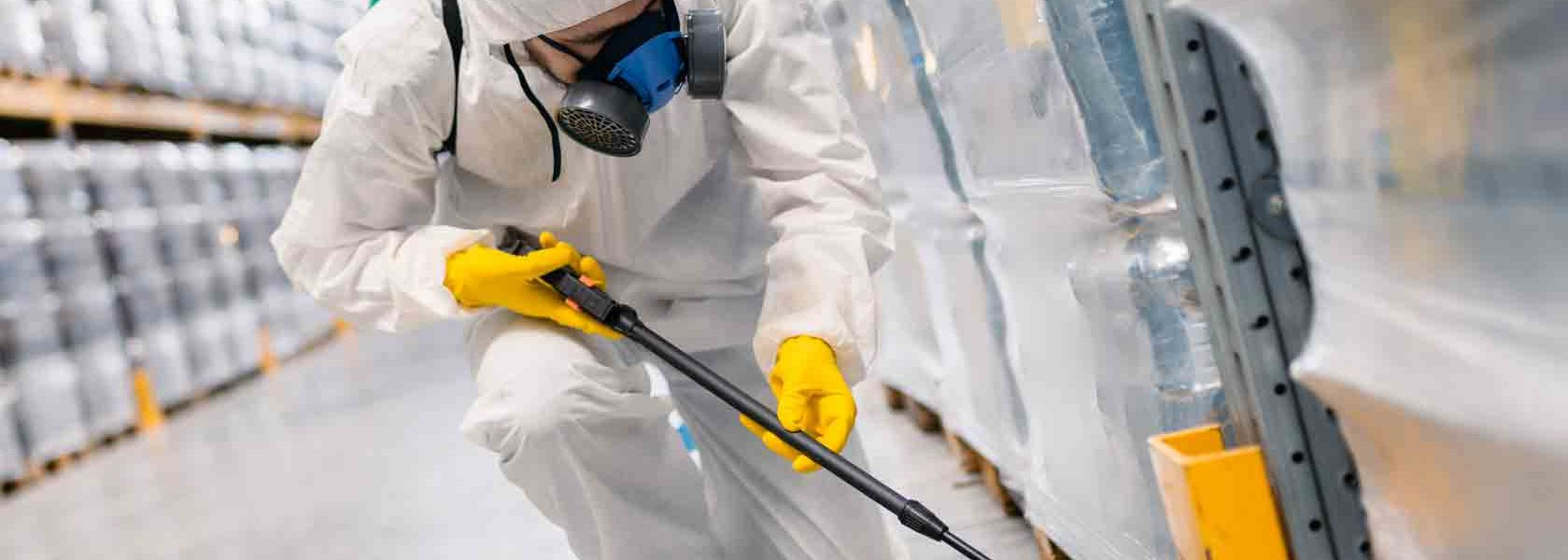 Chemical Versus Natural Pest Control Treatments