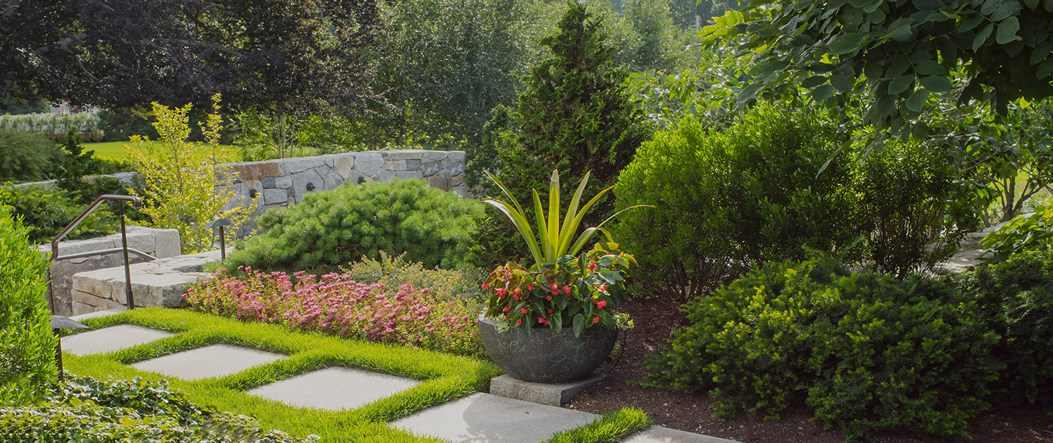 Choose The Services of Expert Contractor When Seeking Landscaping Denver Projects