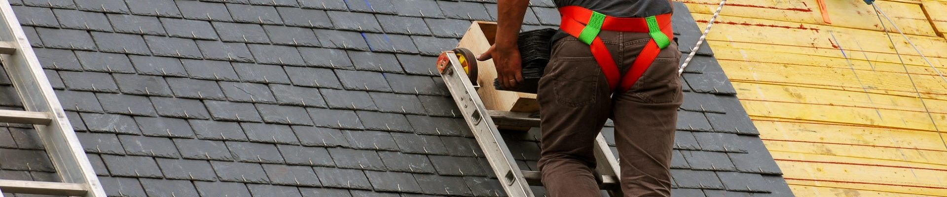 Important Warning About Roof Leaks And Mold