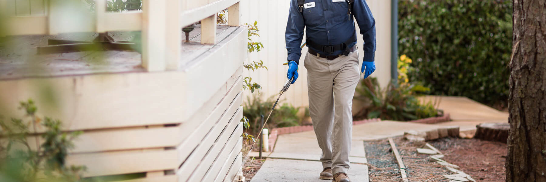 Know the Best Way of Delivering Pest Control Services Sydney