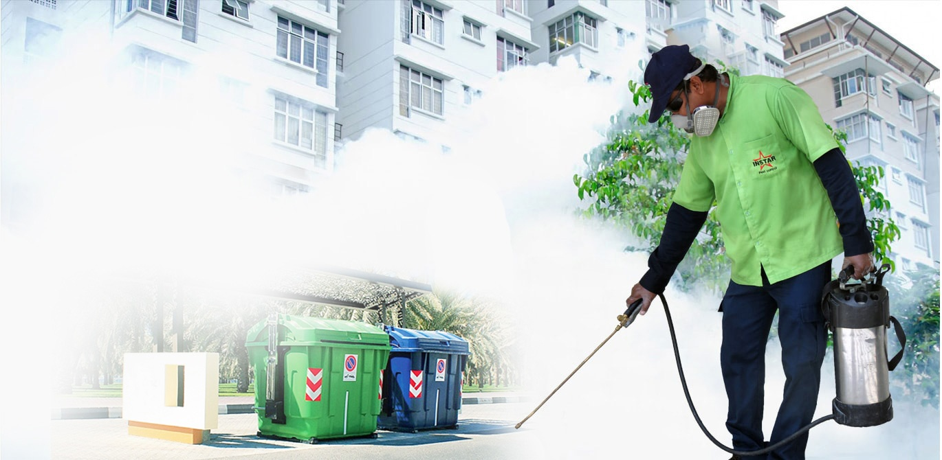 Reasons Behind the Increasing Popularity of the Pest Control Sydney Services