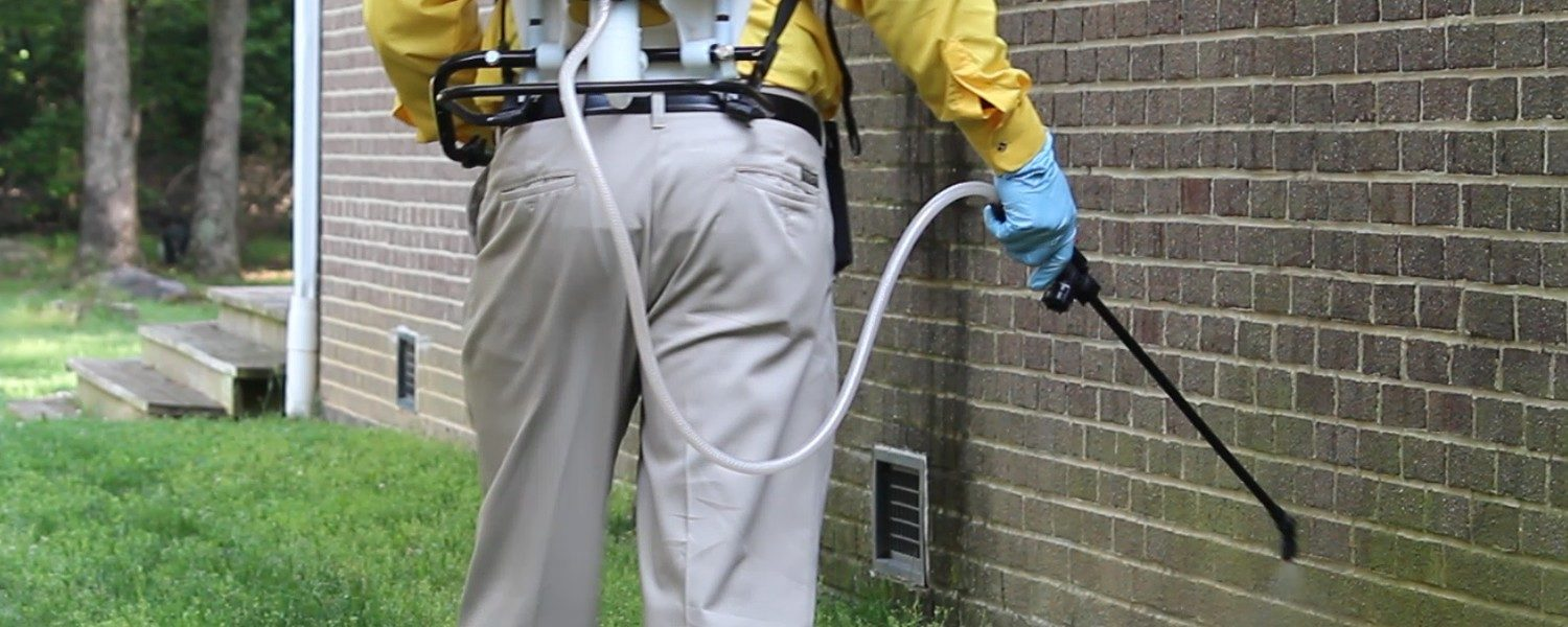 Reasons Why Commercial Pest Control is So Important