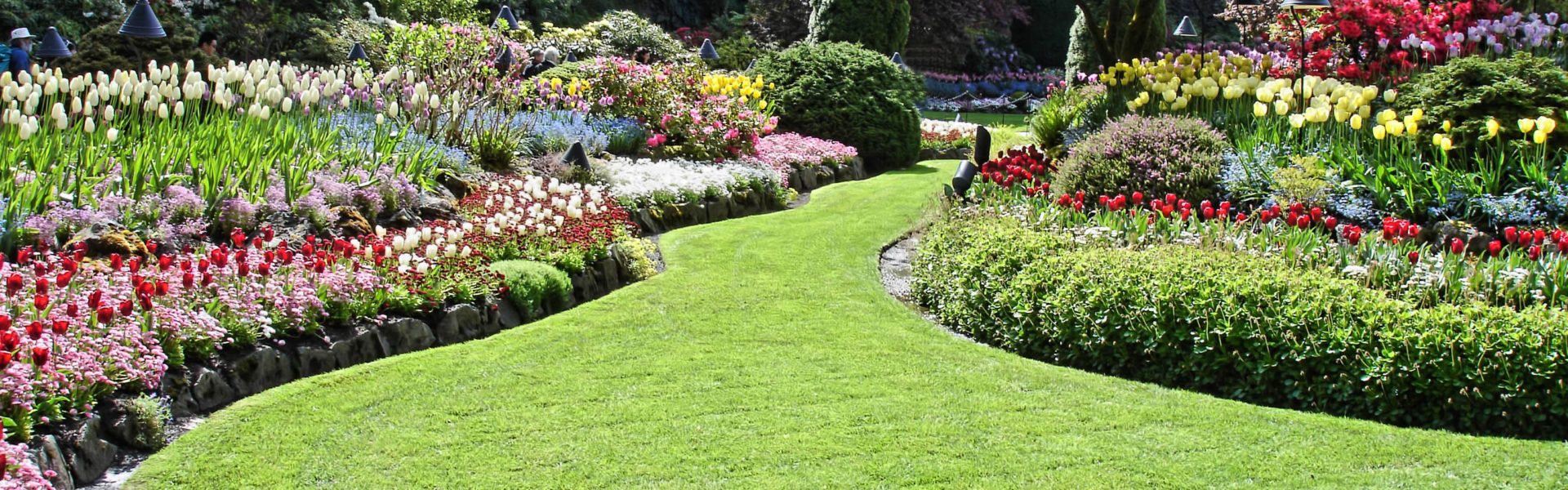 Synthetic Grass Has Proved Itself as The Best Option For Recreational Areas