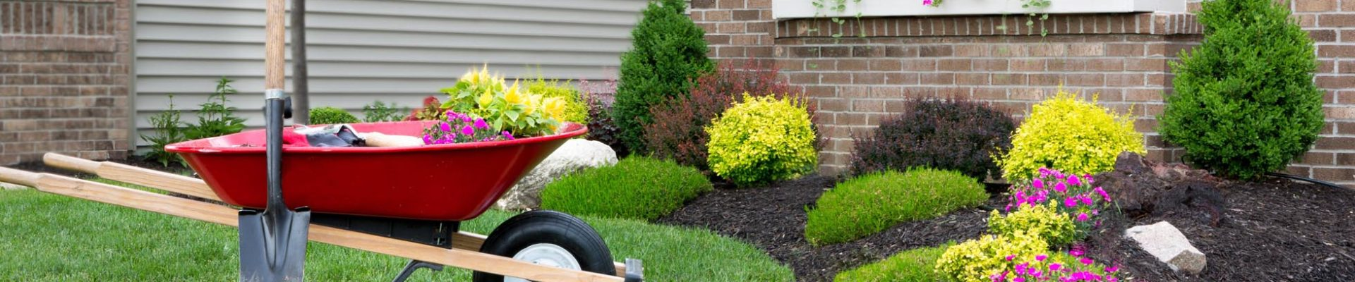 The Advantages of an Expert Landscape Provider