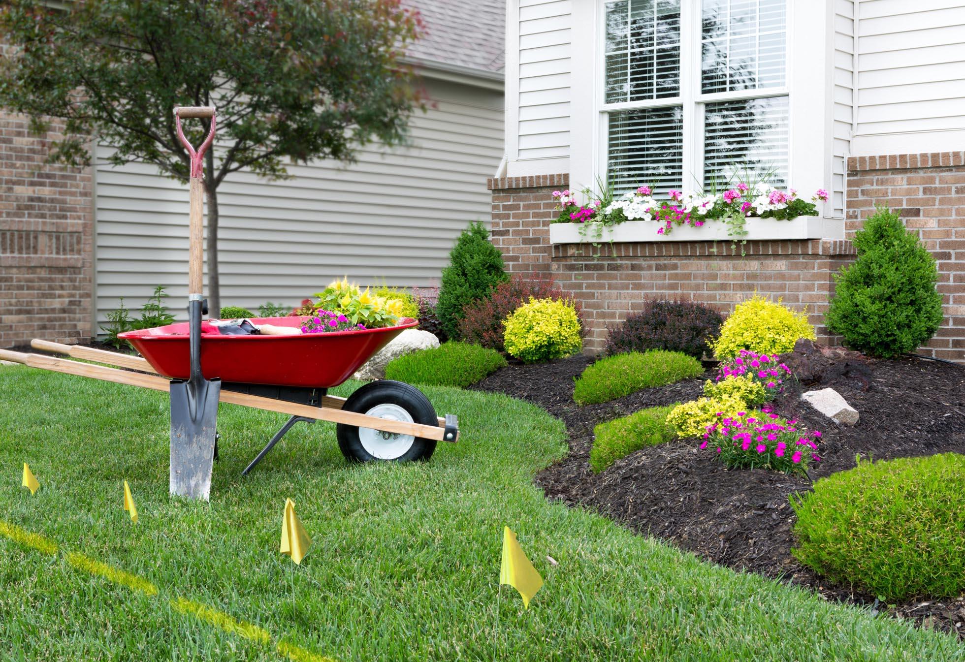 The Advantages of an Expert Landscape Provider