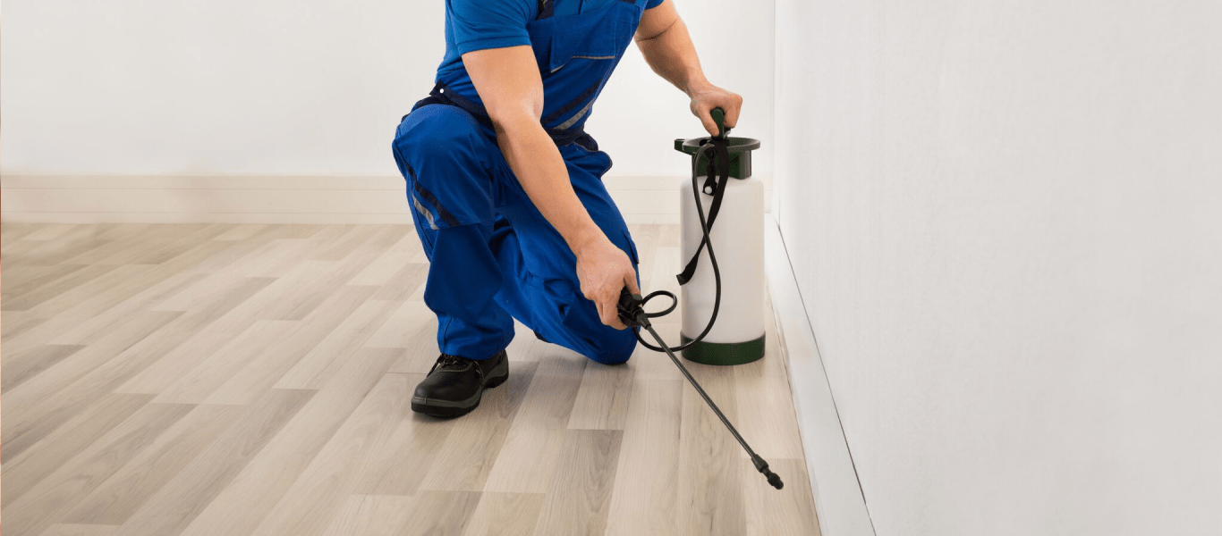 The Importance of Pest Control Services in Present Day Context