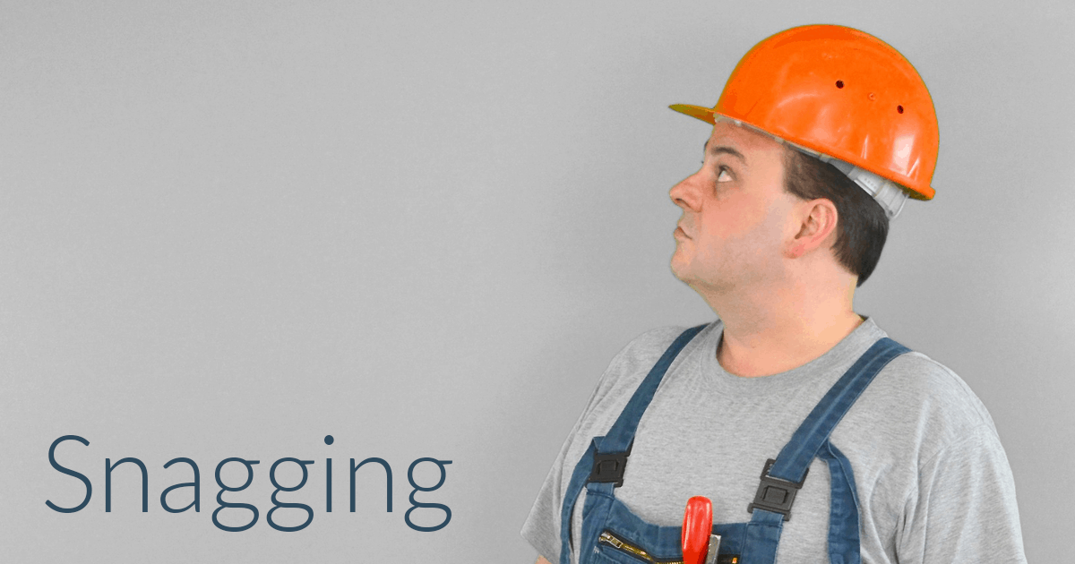 Snagging surveyor